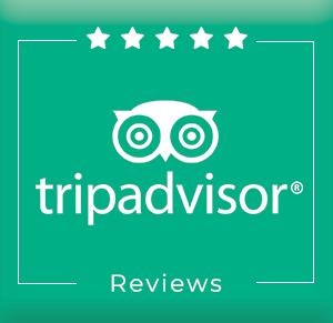 TripAdvisor-Reviews-1.png
